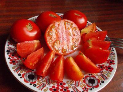 помидор сорт скороспелка