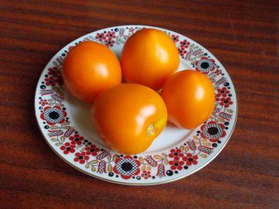Помидор сорт Де-Барао оранжевый