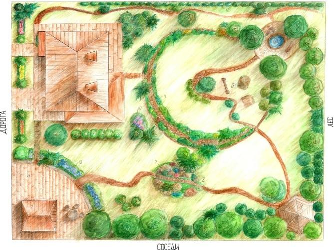 Условные обозначения деревьев в ландшафтном дизайне