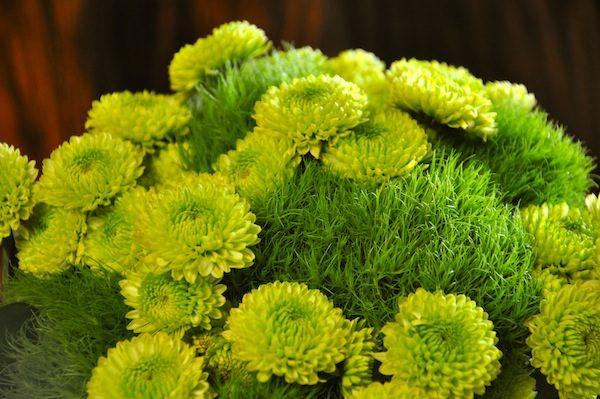 zelenie-cvety