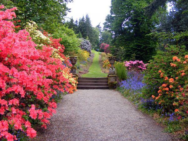 garden-470704_960_720